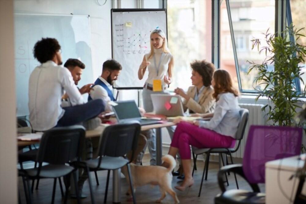 Startups Can Make Noise Online
